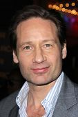 David Duchovny at the
