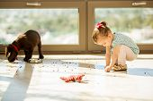 stock photo of labradors  - Cute Labrador puppy making a mess with his food while a little girl helps him pick it up - JPG