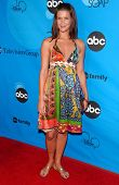 PASADENA, CA - JULY 19: Sarah Lancaster at the Disney ABC Television Group All Star Party on July 19