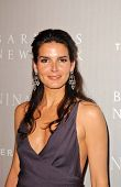 BEVERLY HILLS - APRIL 26: Angie Harmon at the Nina Ricci Fashion Show and Gala Dinner to Benefit The