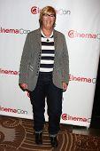 Kori Rae at the Walt Disney Studios Press Event at CinemaCon 2013, Caesars Palace, Las Vegas, NV 04-17-13