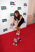 Lisa Vanderpump at the Bravo Media's 2013 For Your Consideration Emmy Event, Leonard H. Goldenson Theater, North Hollywood, CA 05-22-13
