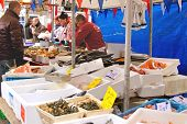 Selling Seafood On The Market In Delft, Netherlands