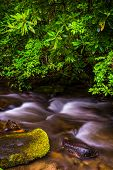 Cascades On Mingus Creek, At Great Smoky Mountains National Park, North Carolina.