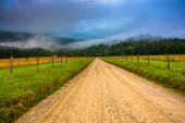 stock photo of cade  - Dirt road and fog in Cade - JPG
