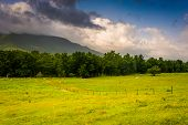 stock photo of cade  - Field and mountains at Cade - JPG