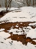 Snowfall Stream In Illinois