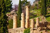 Six ruined columns in Delphi