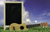 foto of ukulele  - Ukulele with blue sky and Blank Blackboard on green grass - JPG