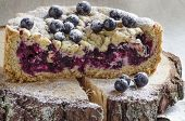 Cutaway Blackcurrant Crumble On Wooden Stump