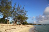 picture of mile  - Seven Mile Beach at the Grand Cayman Island - JPG