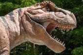 Realistic Model Of Dinosaur Tyrannosaurus Rex