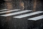 Pedestrian Crossing During The Big Rainstorm