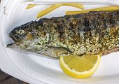 Grilled Fish With A Slice Of Lemon And Some French Fries
