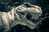 stock photo of tyrannosaurus  - Realistic model of dinosaur Tyrannosaurus Rex  - JPG