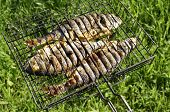 Seabass and Dorado fish grilled  on Green Grass Background Surface