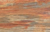 Closeup of a clear wood plank in a deteriorated state