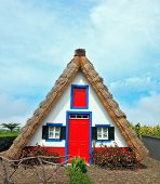 A house with a thatched gable roof. Adorn the facade of the red door and red top window. Charming rural house