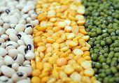 Mix Of Bean