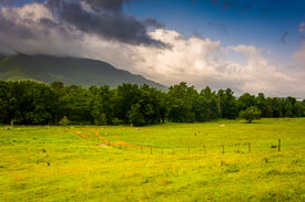picture of cade  - Field and mountains at Cade - JPG