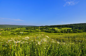 pic of bottomless  - Small village lost among the green hills with dense forests covered flowering meadows with the smell of honey and bottomless blue sky - JPG