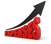Growth Chart and expenses (clipping path included)
