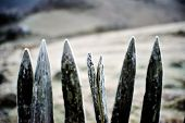 old wooden fence covered with frost in late fall