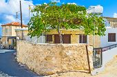stock photo of neo  - The small house with the scenic grape vine against it Neo Chorio Cyprus - JPG