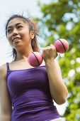 Low angle view of healthy and beautiful young woman lifting dumbbells in park