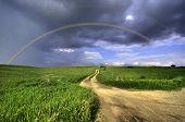 Perfect Double Rainbow