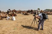 PUSHKAR, INDIA - NOVEMBER 21, 2012: Photographer taking photos at Pushkar fair (Pushkar Mela) - annual five-day camel and livestock fair, one of the world's largest camel fairs and tourist attraction