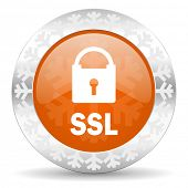 ssl orange icon, christmas button