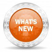 new orange icon, christmas button