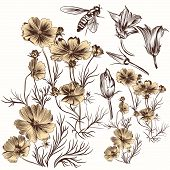 Collection Of Vector Engraved Hand Drawn Flowers In Vintage Style