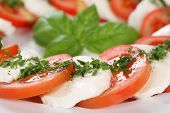 Caprese Salad With Tomatoes And Mozzarella Cheese