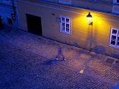 Wall Lamp In Street
