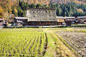 The Historic Villages Of Shirakawa-gand Gokayama
