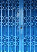 Blue Vintage Door