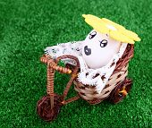 Egg riding bicycle on green background