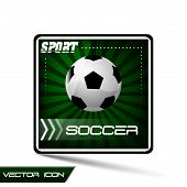 Soccer vector icon or button