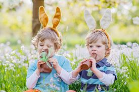 stock photo of bunny costume  - Two little friends with Easter bunny ears at spring green grass and blooming apple garden eating chocolate bunny and having fun outdoors - JPG