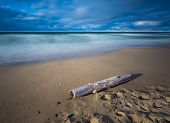 picture of driftwood  - Beautiful sandy sea shore with driftwood. Baltic sea. Long exposure photo.
