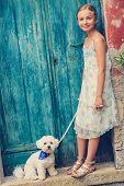 image of maltese  - Lovely fashion girl with maltese dog - JPG