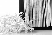 stock photo of strip  - Strips of destroyed paper from shredder - JPG