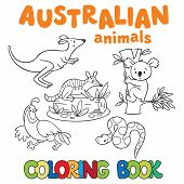 stock photo of wallabies  - Coloring book or coloring picture with wild animals - JPG