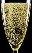 picture of flute  - Champagne flute isolated on a black background - JPG