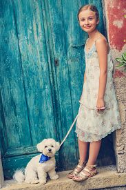 stock photo of maltese  - Lovely fashion girl with maltese dog - JPG
