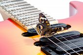 Buckeye Butterfly On A A Guitar