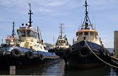 Fleet Of Boats