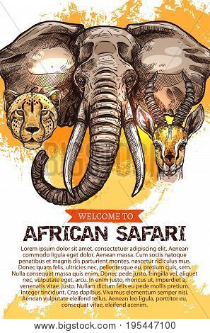 Welcome to African